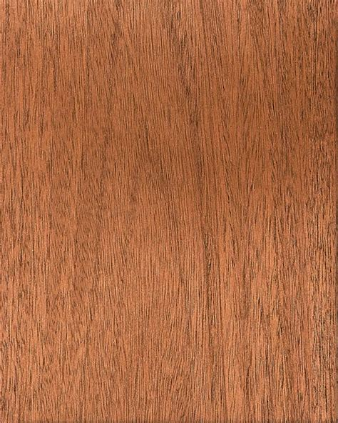 Quarter Sawn Oak Kitchen Cabinets by Mahogany Kitchen Cabinets Gilmans