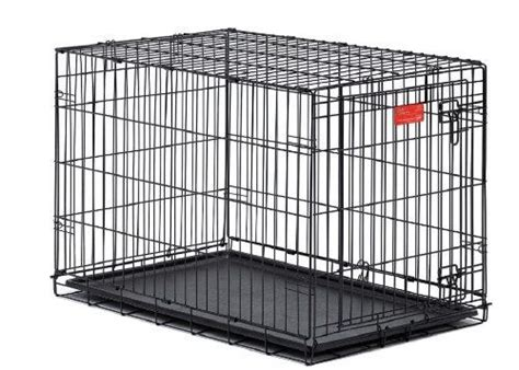 should puppy sleep in crate where should my new puppy sleep thatmutt a