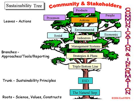 tree why ecosteps sustainability answers 1 why do