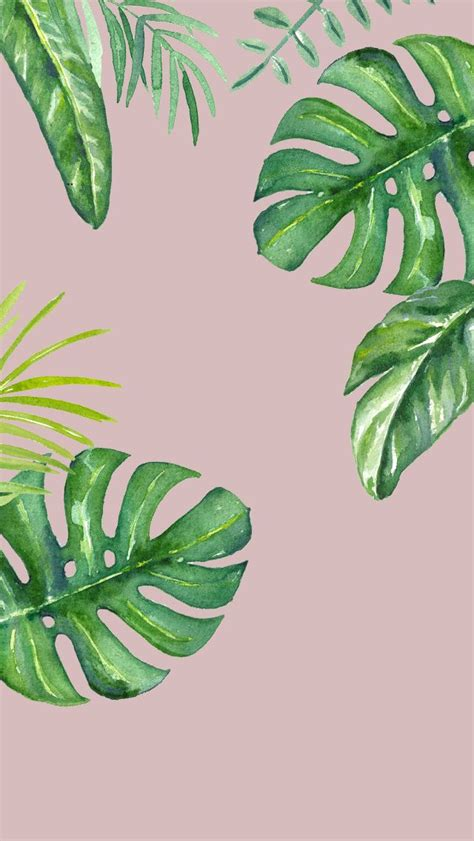 pink jungle wallpaper 17 best ideas about leaves wallpaper on pinterest banana