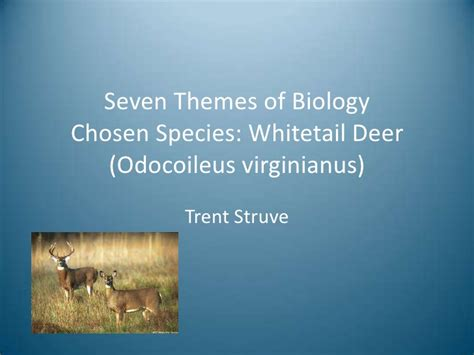 themes of biology quiz seven themes of biology