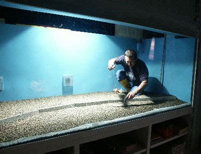 Pompa Aquarium 2000 Liter un bac de 4000 litres eau douce divers aquarium