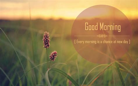 good morning fall quotes quotesgram
