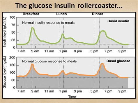 carb  normo carb rosemary cottage clinic blog
