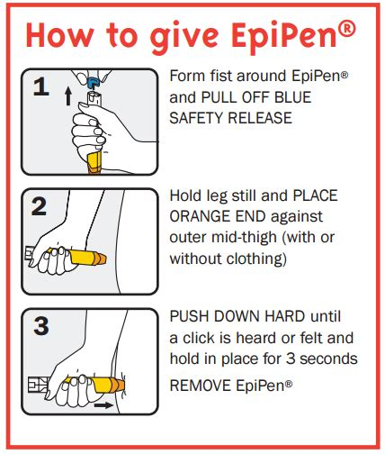 printable epipen instructions medication bags epipen pouch insulated bag asthma