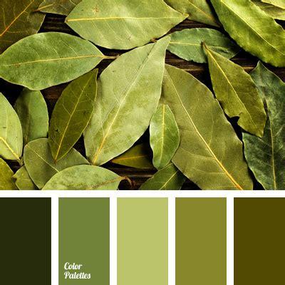 greenish brown color greenish brown color palette ideas
