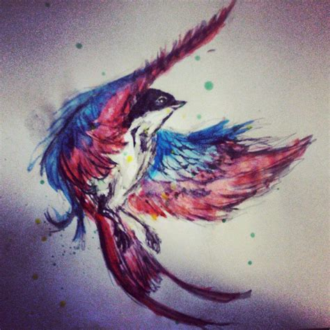 swallow drawing watercolor youtube