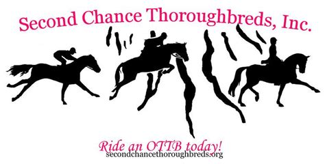 second chance a modern tale happily inc second chance thoroughbreds inc nonprofit in spencer ny