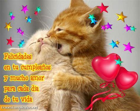 imagenes cumpleaños gatitos gatos con frases de feliz cumplea 241 os en imagen