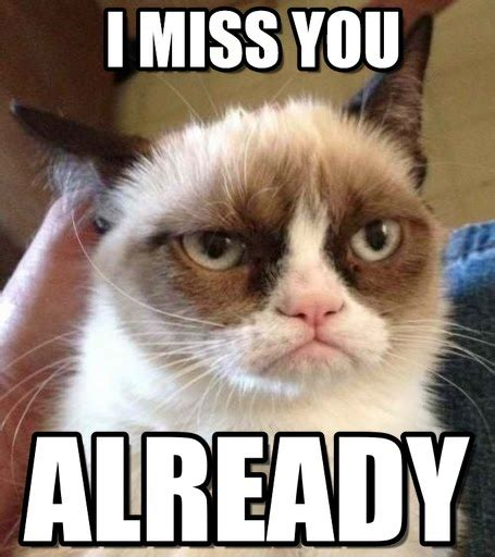 Missing You Meme - i already miss you meme pictures to pin on pinterest