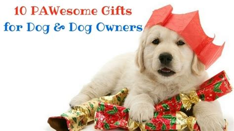 gifts for owners 10 pawesome gifts for gift these to your pet owner friends