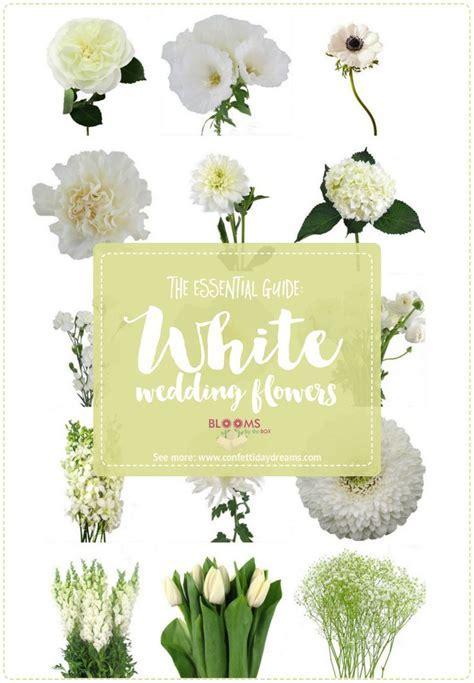 Best 25  Flower names ideas on Pinterest   Flower chart