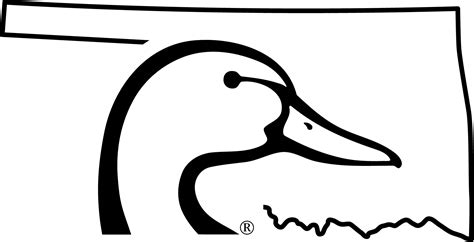 ducks unlimited coloring page ducks unlimited coloring pages coloring pages