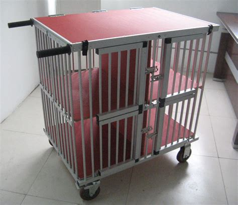 trolley dogs show cage trolley breeds picture