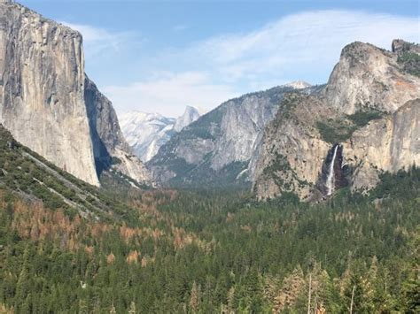 Yosemite Valley Floor Tour by Yosemite Valley Floor Tour Yosemite National Park Ca