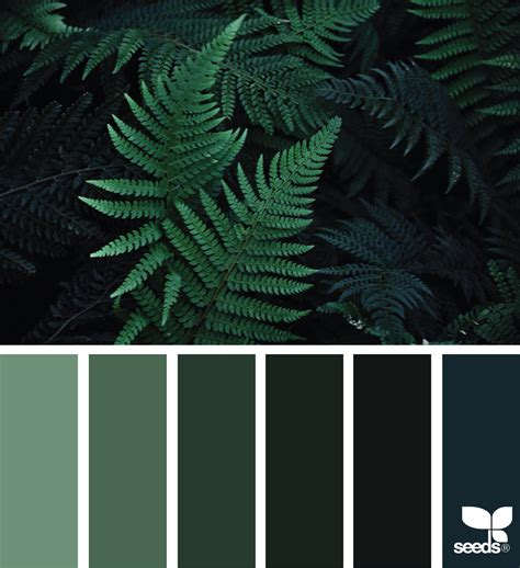 colors that go with green color nature design seeds