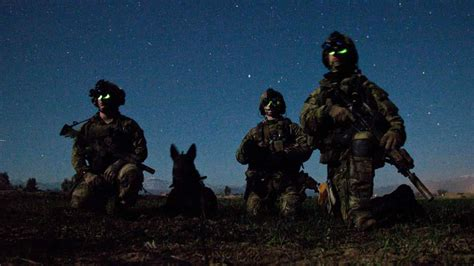 war dogs the of a war in pictures the sitrep