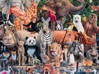 imagenes reino animal reino animal
