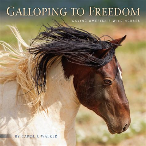 initiation an equestrian freedom to be me books horses just launched galloping to freedom