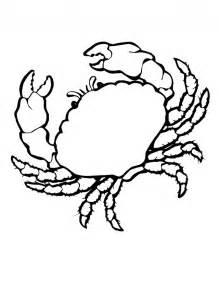 sea shell clip art cliparts co