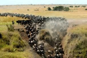 Africa s top 10 tourist destinations how africa news