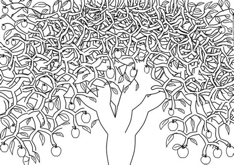 Tree With Apples Coloring Page