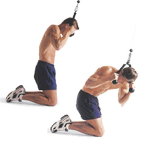cable ab exercises