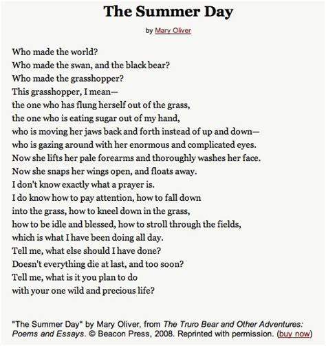 Summer Day Essay by 1000 Images About Oliver On Poem Watercolor Quote And Summer Days