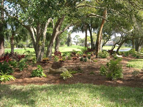 florida friendly landscaping 2015 personal