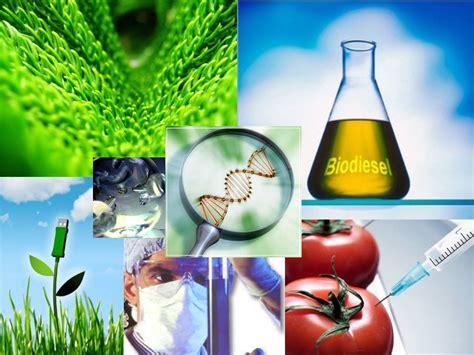 ciencia y tecnologia un avance mas para el futuro la cantera de la divulgaci 243 n cient 237 fica iv scientia