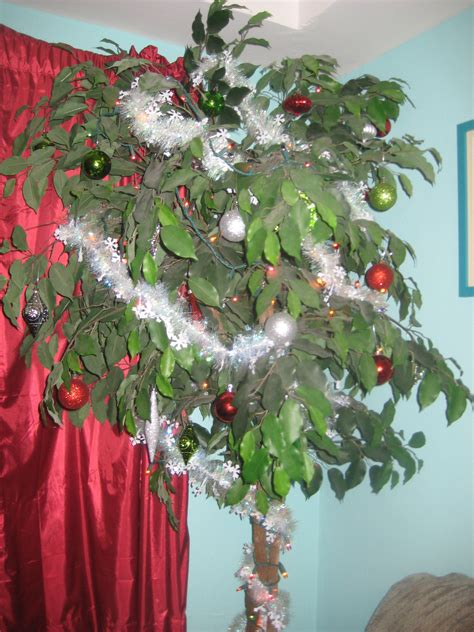 best 28 what of trees are decorated in india type of