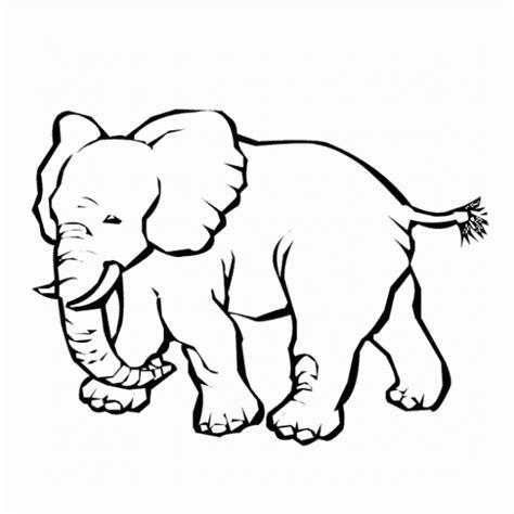 herbivoros dibujos infantiles imagui