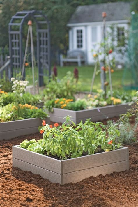 Raised Bed Vegetable Garden Vegetable Garden Beds Raised