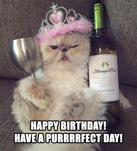 Cat Happy Birthday Meme - 20 cat birthday memes that are way too adorable