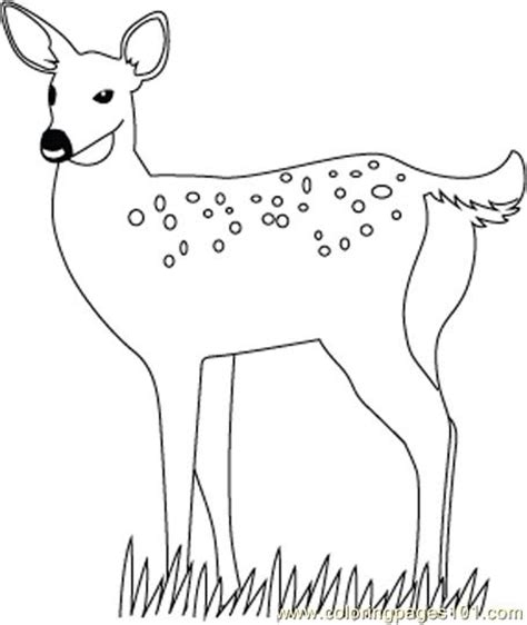Deer Stand Coloring Pages | coloring pages deer stand animals gt deer free