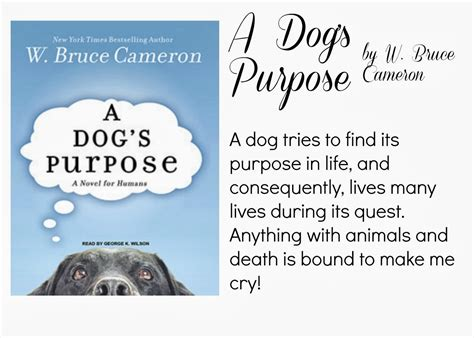how is a s purpose a s purpose w bruce cameron carra lucia books