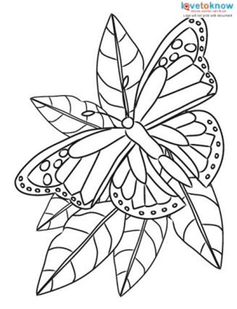 small butterfly coloring pages small butterfly coloring pages coloring pages ideas