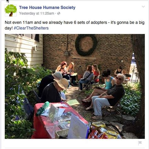 tree house humane society clear the shelters 2015 a success