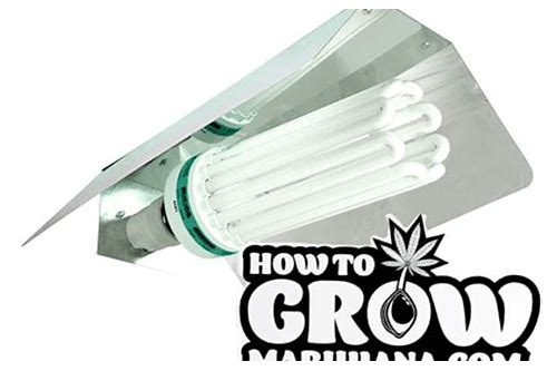 grow light deals