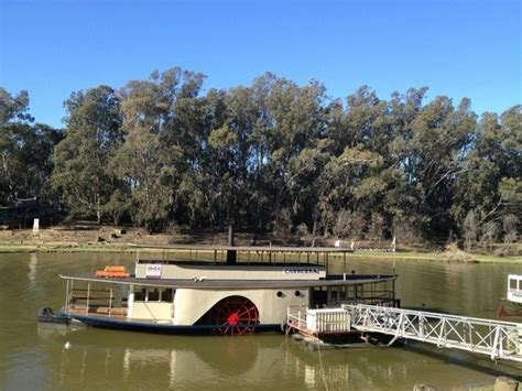 paddle boats canberra another steamer picture of murray river paddlesteamers