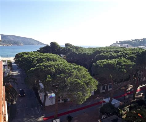 appartamenti vendita isola d elba emmegi agenzia immobiliare vendite isola d elba