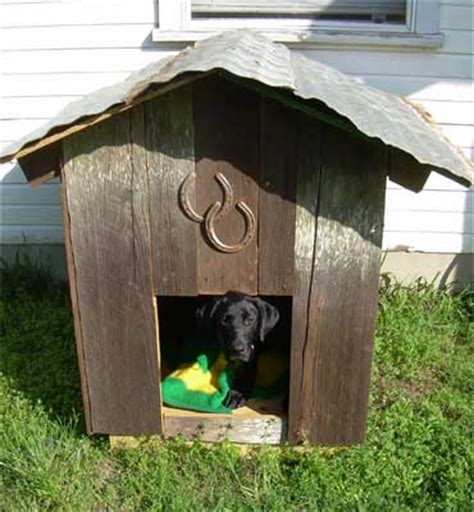 fun dog houses tel woodworking