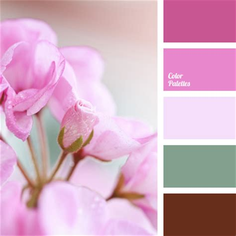 matching colours with pink bright pink color matching color palette for decor