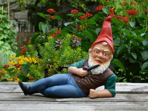 literary scribbles   word garden gnomes study