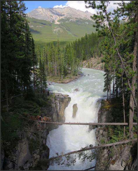 sunwapta falls ca alberta jasper national park sunwapta falls goat