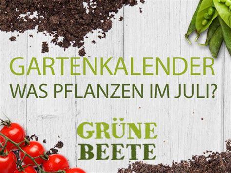 garten pflanzen im juli welches gem 252 se im juli pflanzen eat smarter