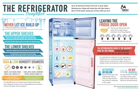 fridge layout poster now that your fridge is clean it s time to reorganize it