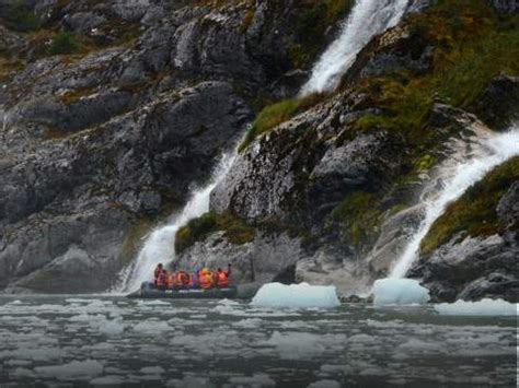 australis glacier cruise patagonia hike  southern