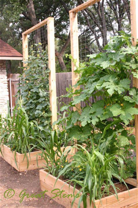 vertical garden trellis 10 square foot garden ideas