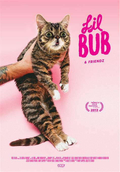 Lil Bub Meme - image 514948 lil bub know your meme